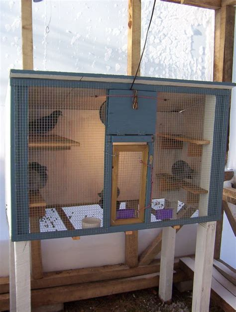 25 best ideas about pigeon cage on macaw cage