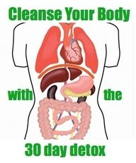 Silicone Detox Protocol by 33 Best Images About Detox Diet Approved On 30