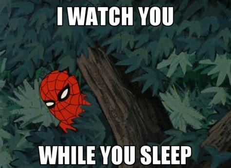 Spider Memes - spider meme pictures to pin on pinterest pinsdaddy