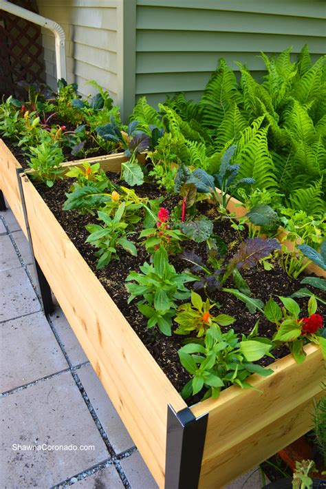 elevated raised garden beds how to plant an elevated garden bed shawna coronado