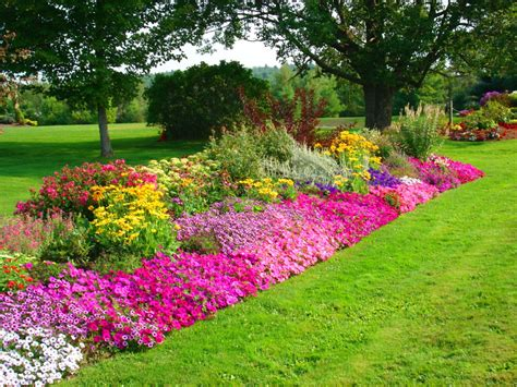 Pretty Flower Garden Beautiful Flower Wallpapers For You Wallpaper