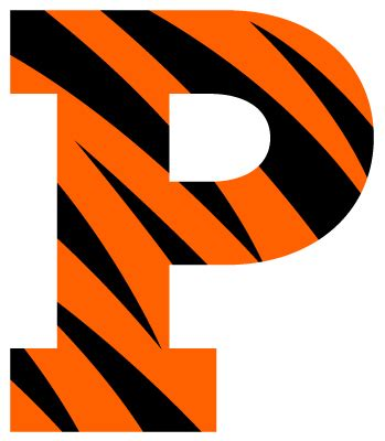princeton colors princeton tigers color codes hex rgb and cmyk team