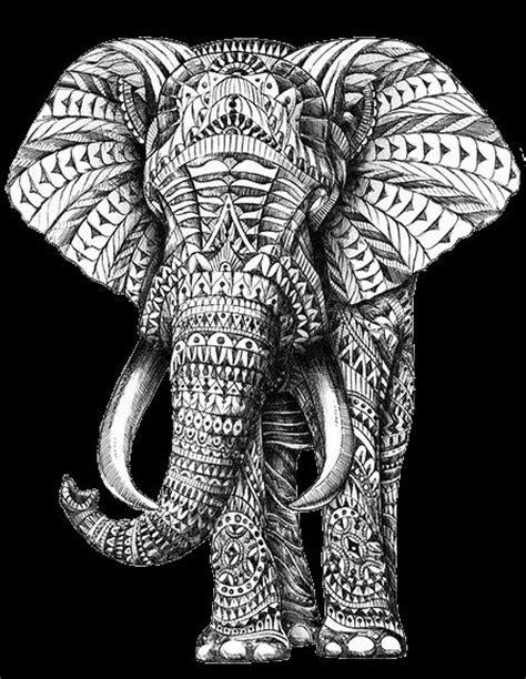 Elefant abbildung tribal muster and elefanten skizze on pinterest