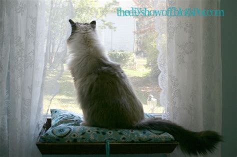 how to make a cat window seat hometalk easy diy cat perch window seat