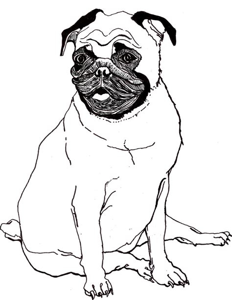 pug color baby pug coloring pages