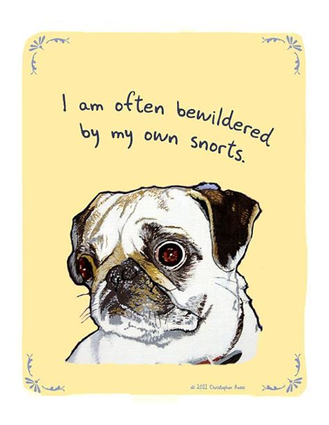 do pugs snort 82 best images about gifts for pug on a pug pug and pop