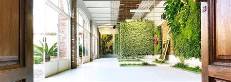 giardini verticali per interni realizzazione giardini verticali pareti verdi verticali