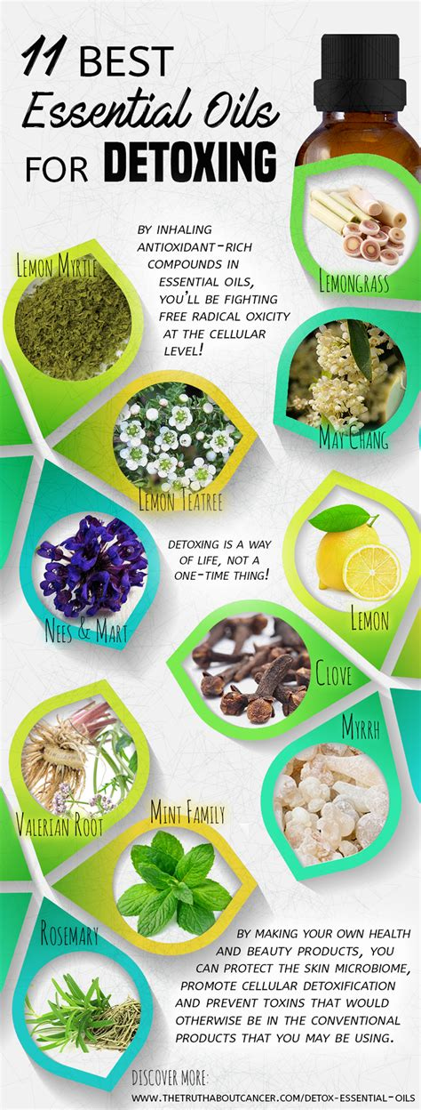 Depo Detox by 11 Of The Best Essential Oils For Detox