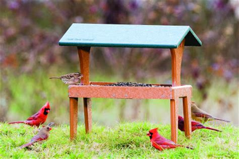 wild birds unlimited wbu fly thru ground feeder