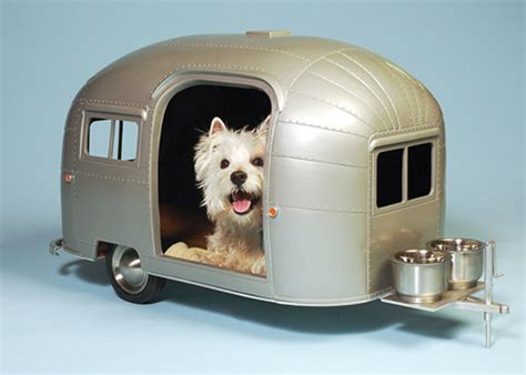 insane houses the 6 most insane dog houses on the planet bark meow