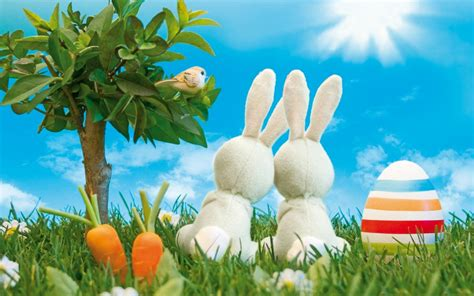 google wallpaper easter 32 beautiful easter wallpaper free to download