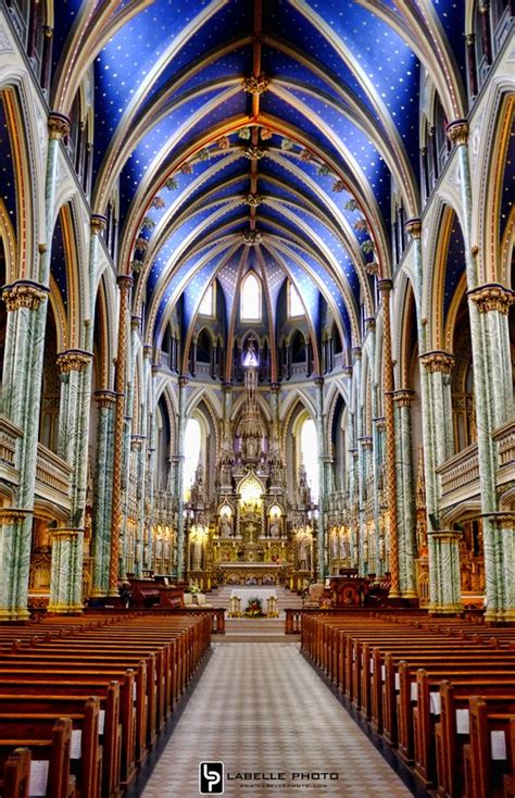Notre Dame Search Notre Dame Cathedral Hours Driverlayer Search Engine