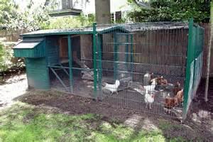 kleintierhaltung im garten tiere in der stadt 2 h 252 hner hinterm haus halten