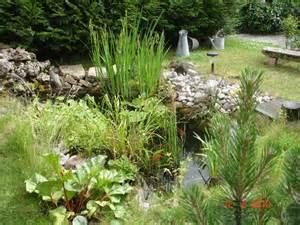 mon espace jardin d agr 233 ment album photo aufeminin