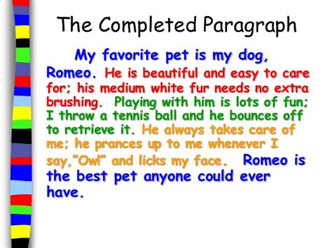 Animals As Pets Essay by Easy Essay On My Pet