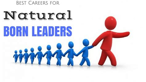 born leader definition 7 best careers for natural born leaders wisestep