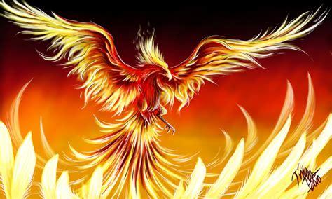phoenix  takaya  deviantart