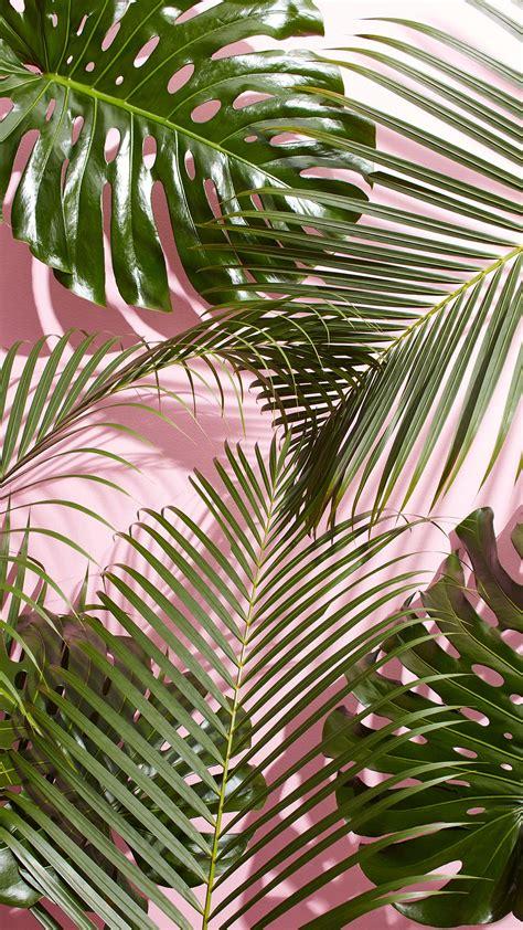 wallpaper tropical green west elm tropical leaves wallpaper jpg 1242 215 2208 misc