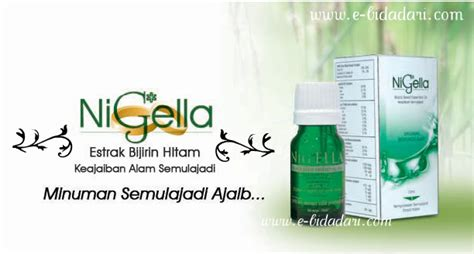 Istimewa Setrika Wajah Ion welcome to dhiya boutique dapatkan produk dcl di sini