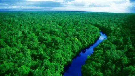 amazon brazil top brazilian amazon destinations peru for less