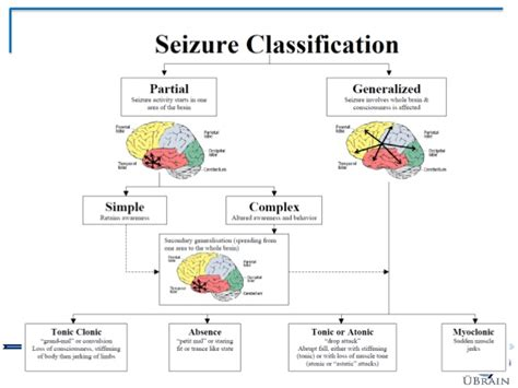 focal motor seizure symptoms epilepsy a modern day perspective