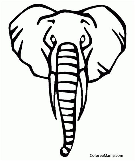 imagenes de elefantes faciles para dibujar colorear cabeza elefante animales de la sabana dibujo