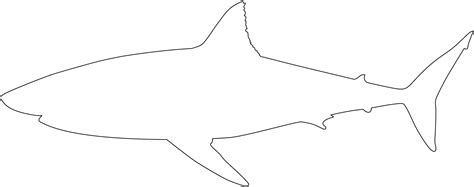 Shark Outline Picture For Coloring I Like This Shark As A Great White Shark Template