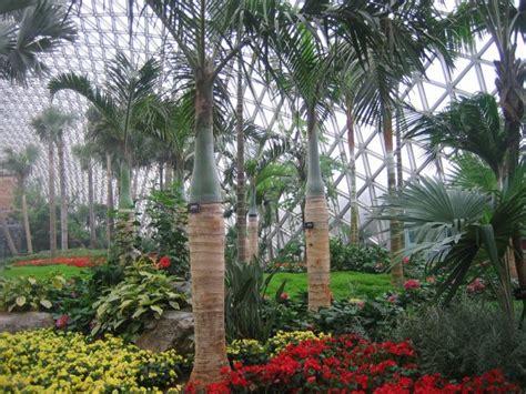 Shanghai Botanischer Garten