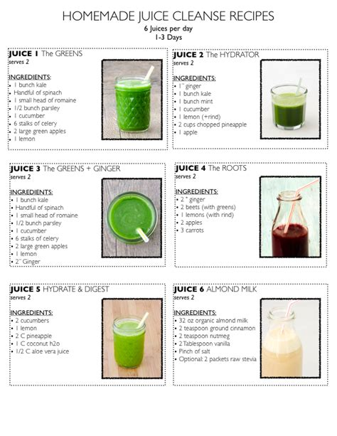 5 Day Juice Detox Recipes by Juicing A How To Guide For Increasing Your Health