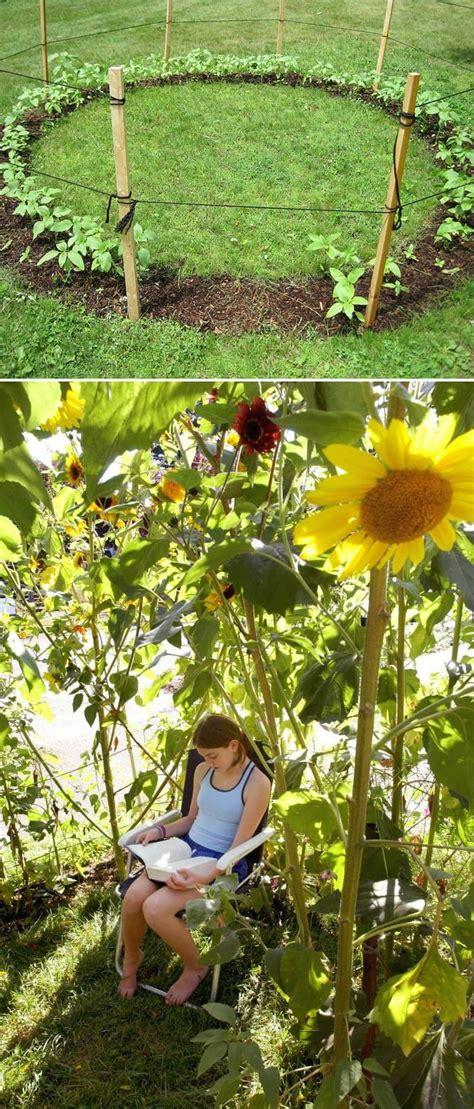 32 cheap and easy backyard ideas 17 best cheap landscaping ideas on pinterest landscaping ideas outdoor landscaping