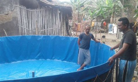 Jual Kolam Terpal Rangka jual kolam terpal karet lengkap rangka siap pakai agro