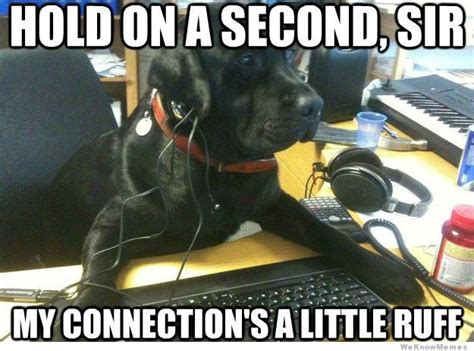 Dog Phone Meme - doggie tech support weknowmemes