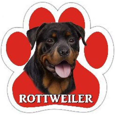 rottweiler in car wholesale lover gifts wholesale toys wholesale clothing rottweiler car