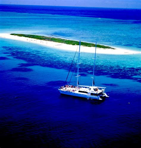 reef experience catamaran great barrier reef cruises cairns island tour michaelmas cay