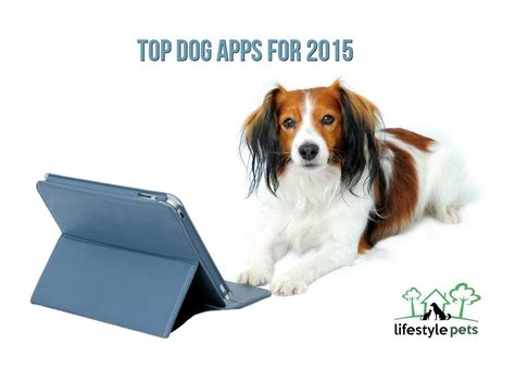 for dogs app top apps for 2016