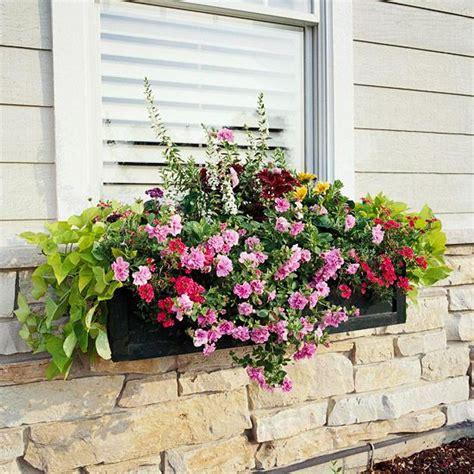 plant window boxes window boxes window and boxes on
