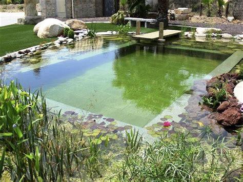 natural pools diy natural pools build your own swimming pond pools