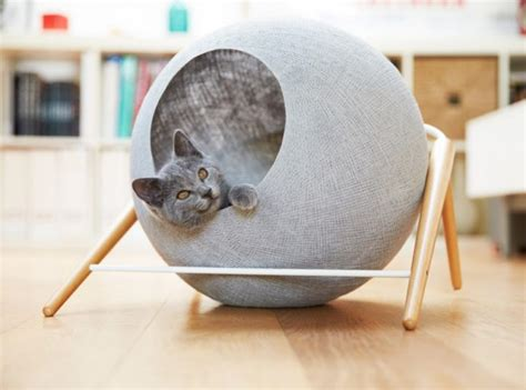 modern cat beds creative ways to incorporate pet items into your home d 233 cor