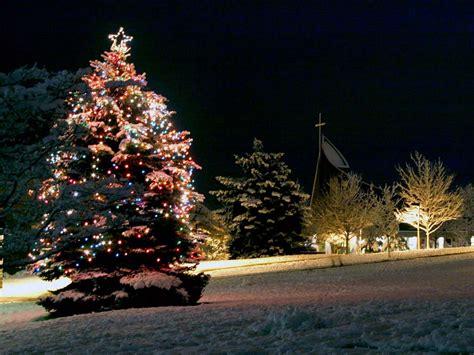 christmas tree  desktop wallpapers page