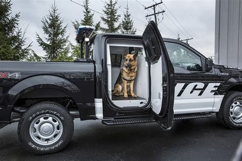 police truck 2016 ford f 150 special service vehicle reports in for