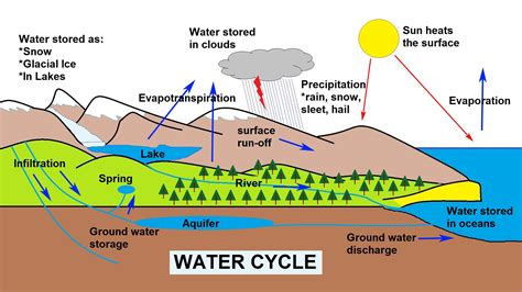 water cycle diagram with explanation the water cycle explained