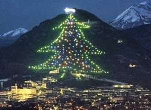 umbria is home to the world s largest christmas tree