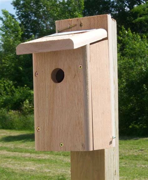 chickadee nest box made especially for chickadees