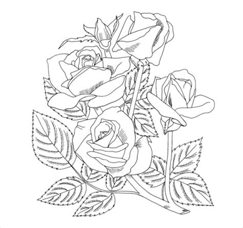 rose coloring pages pdf flower coloring pages 22 free psd ai vector eps