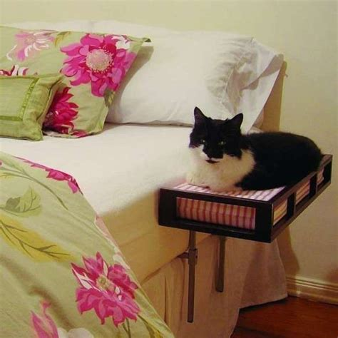 diy cat beds 17 best ideas about cat beds on pinterest diy cat bed