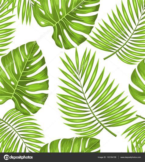 wallpaper daun palma papel de parede sem costura com folhas verdes tropicais