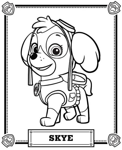 coloring pa paw patrol coloring pages paw patrol coloring pa birthday paw
