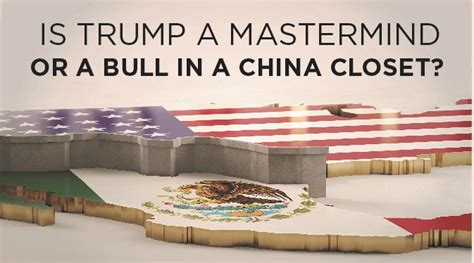 Bull In A China Closet by Is A Mastermind Or A Bull In A China Closet