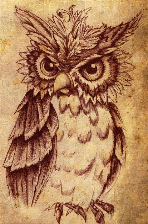 tattoo owl art owl owls fan art 30237116 fanpop