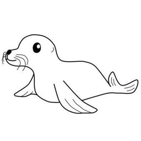 imagenes para colorear foca dibujos de focas 187 focapedia